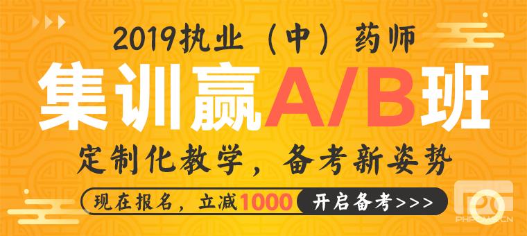 2019药师AB班