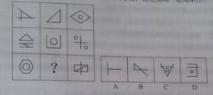 2015山东选调生考试行测真题:判断推理3