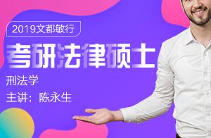 文都敏行2019考研法律硕士刑法学(陈永生)