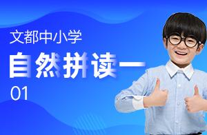 文都中小学自然拼读一 01