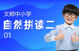 文都中小学自然拼读二 01