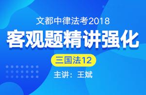 文都中律法考2018法考客觀題精講強化(王斌)12