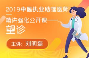 文都2019中医执业助理医师精讲强化公开课望诊