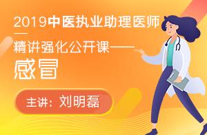 文都2019中医执业助理医师精讲强化公开课感冒