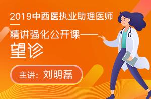 文都2019中西医执业助理医师精讲强化公开课望诊