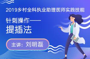 2019乡村全科执业助理医师实践技能——针刺操作——提插法