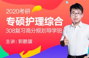 文都2020考研专硕护理综合308复习高分规划导学班(郭鹏骥)