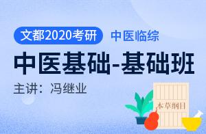 文都2020考研临床医学综合能力(中医)基础班中医基础(冯继业)
