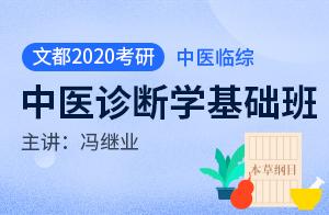 文都2020考研临综合能力(中医)基础班中医诊断学(冯继业)
