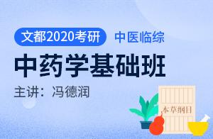 文都2020考研临床医学综合能力(中医)基础班中药学(冯德润)