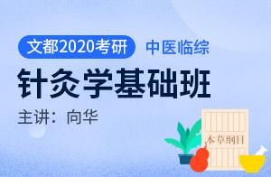 文都2020考研临床医学综合能力(中医)基础班针灸学(向华)