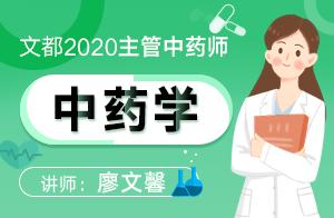 2020主管中藥師—基礎精講中藥學