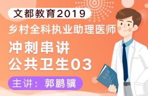文都教育2019乡村全科执业助理医师冲刺串讲公共卫生03