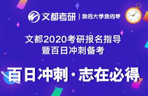 文都教育2020考研数学冲刺规划(王威)