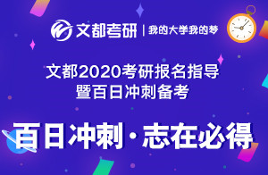 文都2020考研教育学/教育硕士冲刺备考规划(孙锦澜)