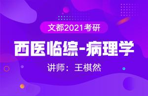 文都2021考研西医临综-病理学(王棋然)