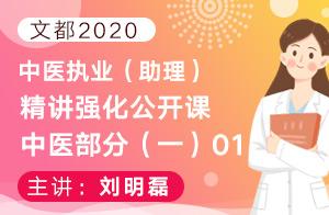 文都2020中医执业(助理)精讲强化公开课中医部分(一)01