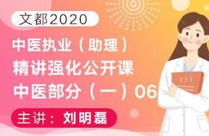 文都2020中医执业(助理)精讲强化公开课中医部分(一)06