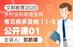 文都教育2020乡村全科助理医师常见病多发病(1-5)公开课01
