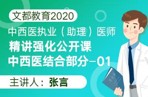 文都教育2020中西医执业(助理)精讲强化中西医结合01