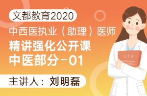文都教育2020中西医执业(助理)精讲强化中医部分01