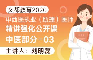 文都教育2020中西医执业(助理)精讲强化中医部分03