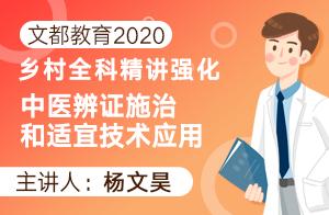 文都教育2020乡村全科精讲强化中医辨证施治和适宜技术应用