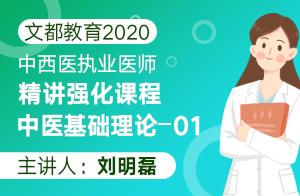 文都教育2020中西医执业医师精讲强化课程中医基础理论01