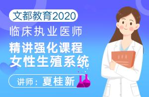 文都教育2020临床执业医师精讲强化课程女性生殖系统