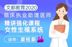 文都教育2020临床执业助理医师精讲强化课程女性生殖系统