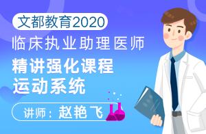 文都教育2020临床执业助理医师精讲强化课程运动系统