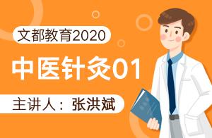 文都教育2020中医针灸01
