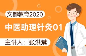 文都教育2020中医助理针灸01