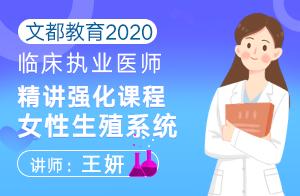 文都教育2020临床执业医师精讲强化女性生殖系统(王妍)