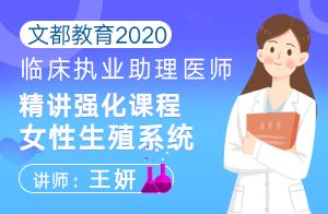 文都教育2020临床助理医师精讲强化女性生殖系统(王妍)