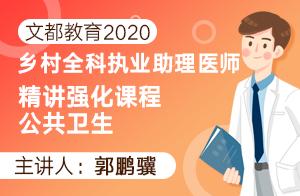 文都教育2020乡村全科执业助理医师精讲强化课程公共卫生