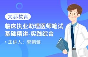 临床执业助理医师笔试基础精讲 实践综合